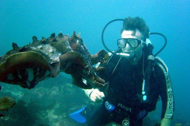 """""""Scuba Diving Point Lowly"""""""