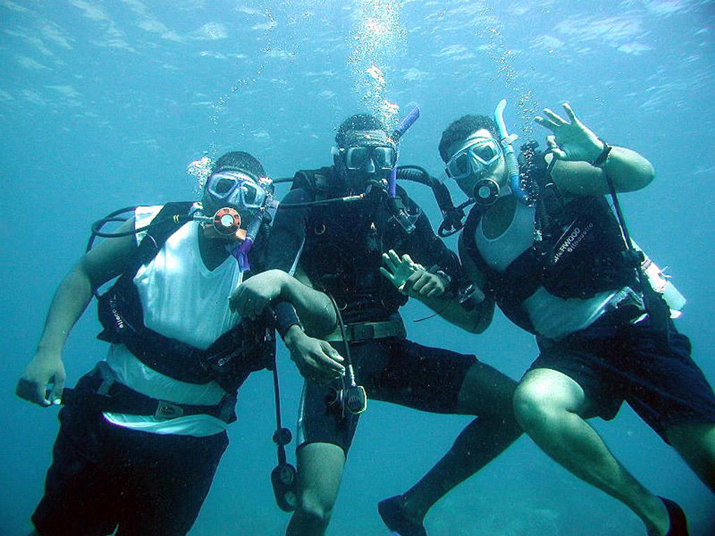 Scuba Diving Wool Bay Jetty Yorke Peninsula South ...