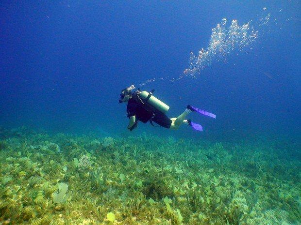 """""""Scuba diving Stony Point"""""""