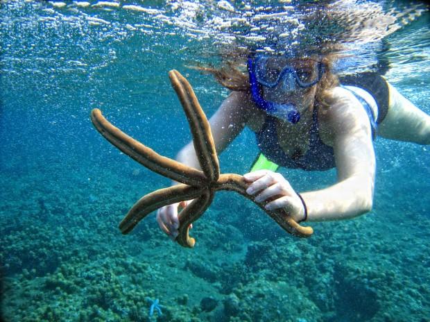 """Snorkeling Moonta Bay"""