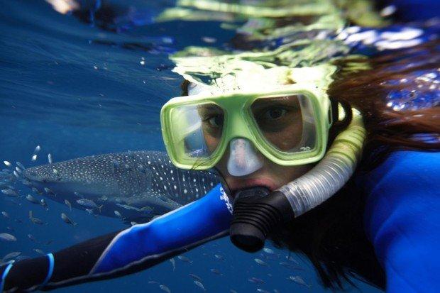 """""""Snorkeling Wardang Island"""""""