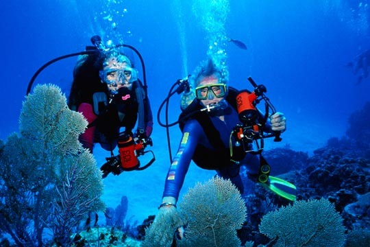 """Wasini Island, Shimoni Scuba Diving"""