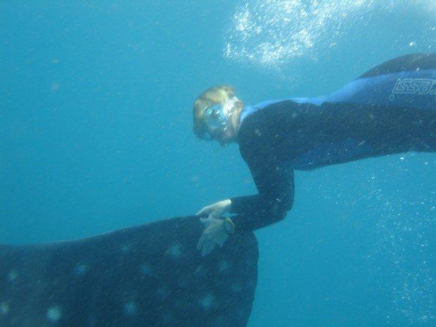 """Aliwal Shoal, Durban Snorkelling"""