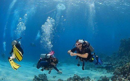 """Bondi Beach, Sydney Scuba Diving"""