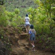Kapilau Ridge Trail, Kahului