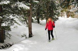 Tonga Ridge Trail, Wenatchee