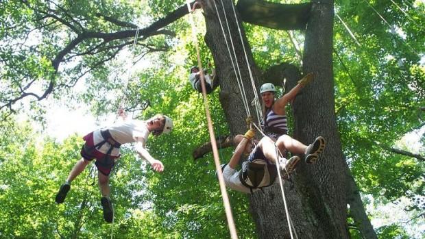 """Tree climbing"""