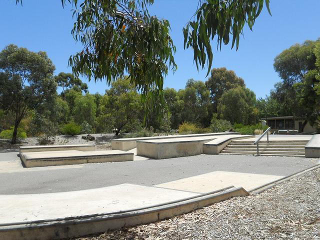 Forestville australia