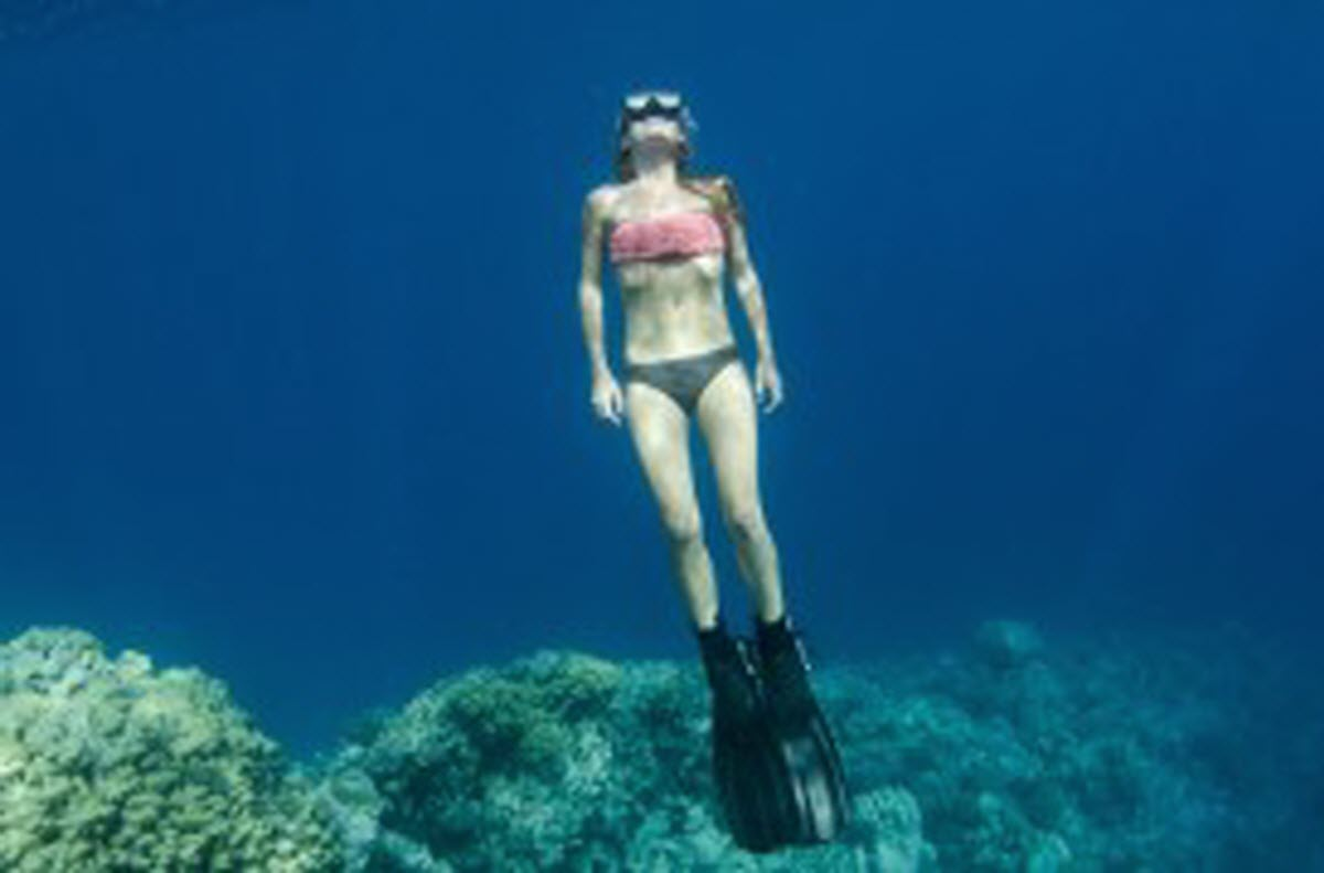 Snorkeling Big Lagoon Trinidad California Usa