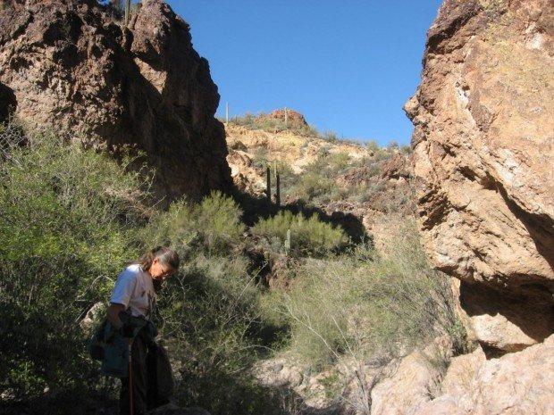 """""""Boulder Creek Hiker"""""""