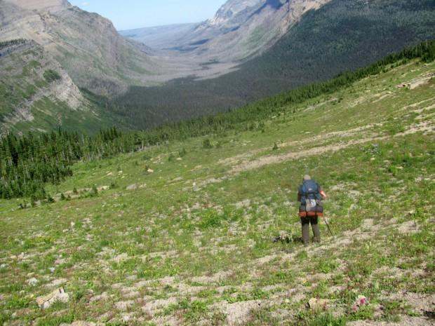 """Eagle Meadow Backpacking"""