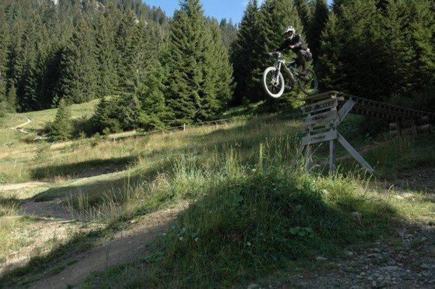 """Ebbetts Pass Mountain Biking Freeride"""
