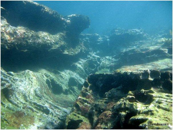 """Fairlight Scuba Diving"""