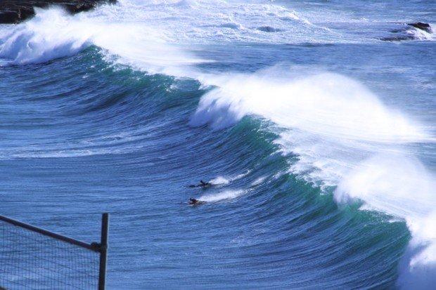 """Surfing Freshwater"""