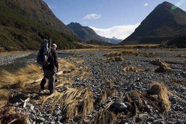 """Hiker at Greenstone-Caples Track"""