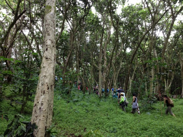 """Hikers at Woodbuck Basin Trailhead"""