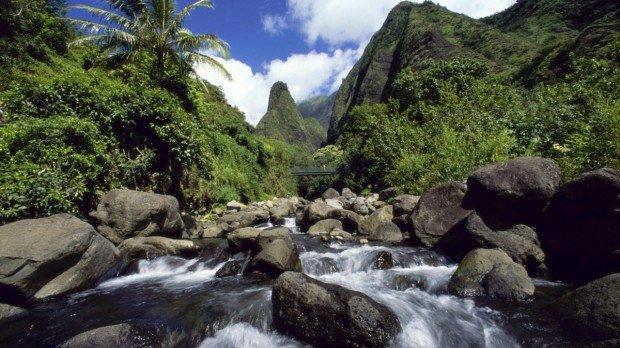 """Hiking Streamside Trail Kahului"""