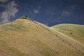 Swakane Canyon Trail, Wenatchee
