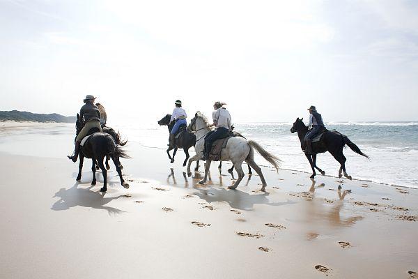 """""""Isimangaliso Wetland Park, Elephant Coast Horseback Riding"""""""