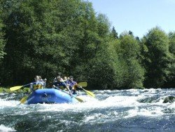 McKenzie River, Blue River