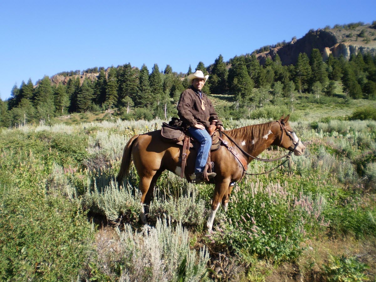 Horseback riding mount shasta redding california usa for Where can i go horseback riding near me