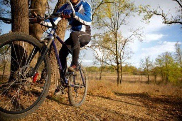 """""""Mountain Biker at Switzerland Trail"""""""