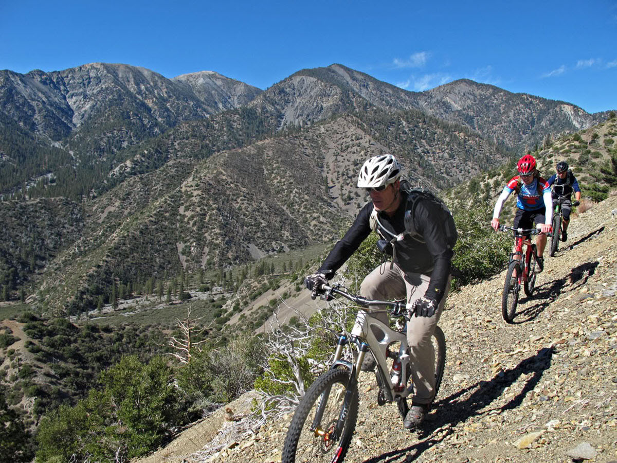 """Mountain Bikers at Mount Baldy"""