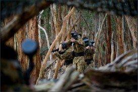 Kuitpo Forest, Adelaide