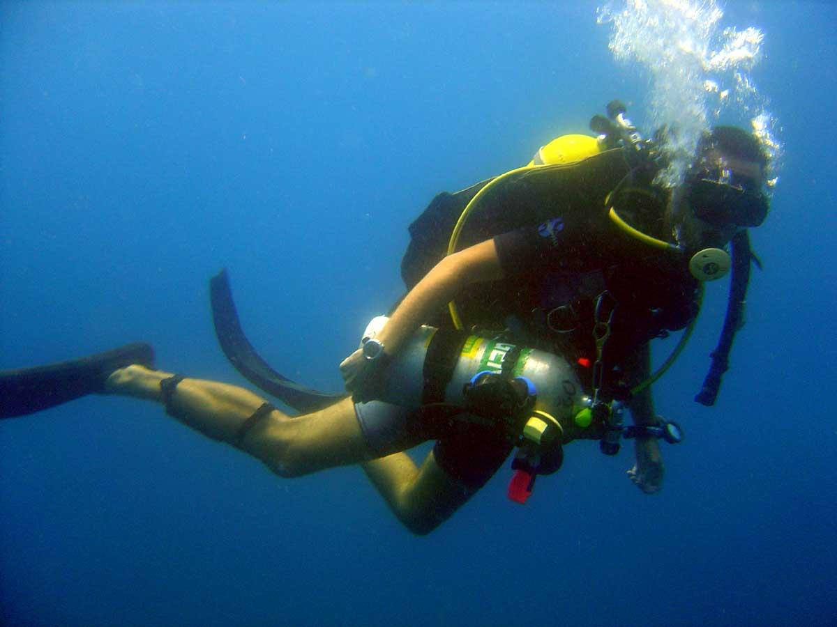 水肺潜水_Scuba Diving Isla Mary Ann Ushuaia Tierra del Fuego Argentina