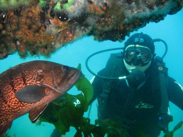 """Scuba Diving Puerto Cucharita"""