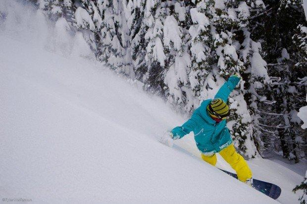 """""""Sierra at Tahoe Snowboarder"""""""