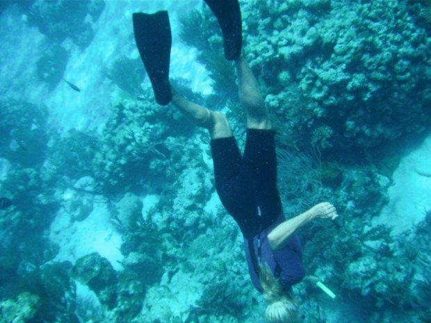 """Snorkeling Big Lagoon"""
