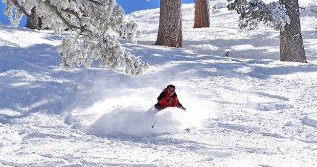 """""""Snow Valley Alpine Skiers"""""""
