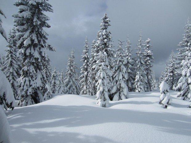 """""""Snowshoeing Keechelus Lake Trail"""""""