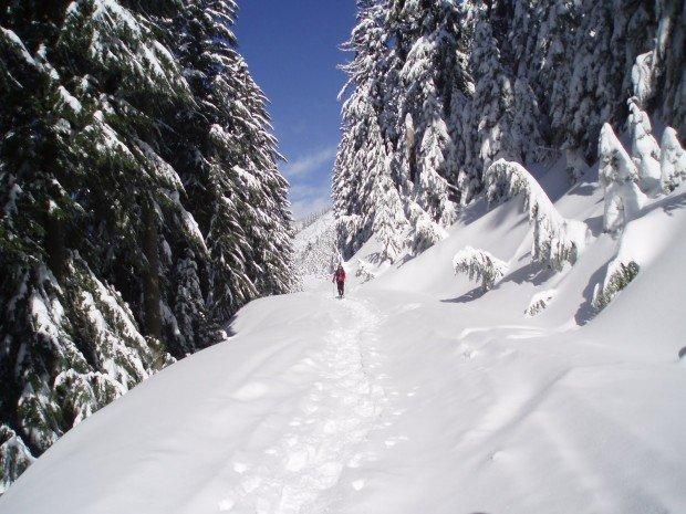 """""""Snowshoeing Kendal Peak Lakes"""""""