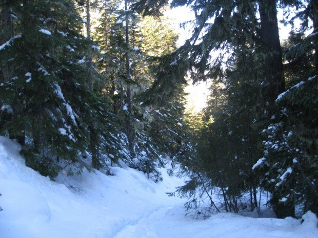 """Snowshoeing Lenham-Lake-Trail"""