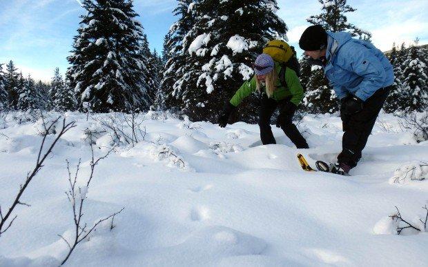 """Snowshoeing White Pass Nordic Center"""