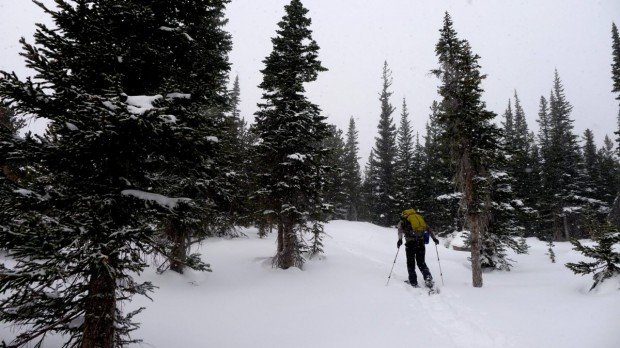 """""""Snowshoeing at Coney Flats"""""""