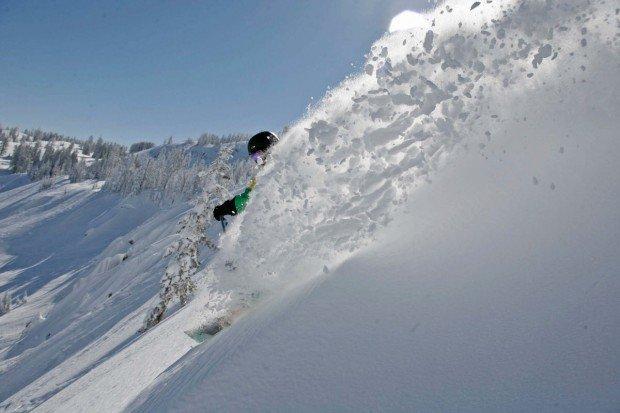 """Sugar Bowl Alpine Skier"""