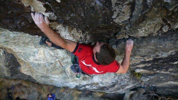 """""""Wye Creek Climber"""""""