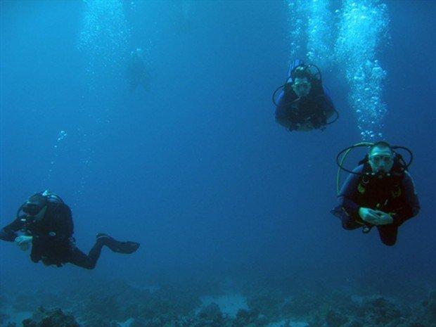"""""""Cadwallon Wreck Scuba Diving"""""""
