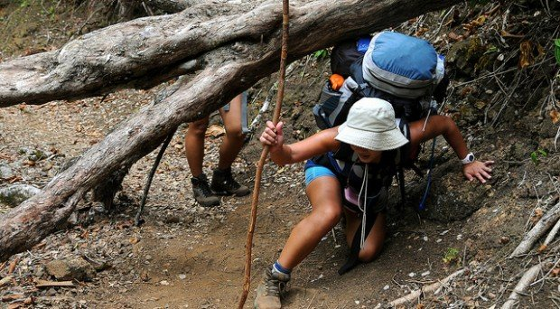 """Hiking Muliwai Trail"""