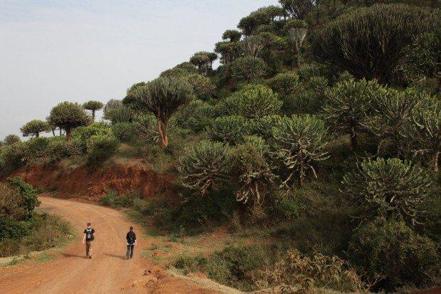 """Hiking trail at Mount Longonot"""