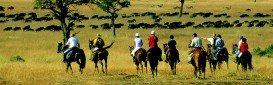 Maasai Mara National Reserve, South Rift Valley