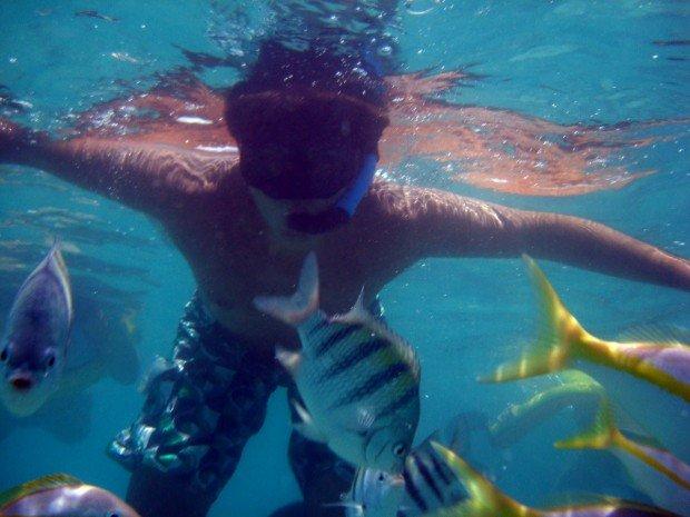 """Ilha Grande Snorkeling"""