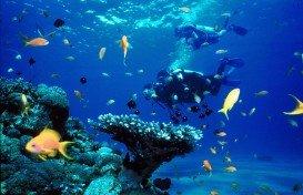 Linene Reef, Bazaruto Archipelago