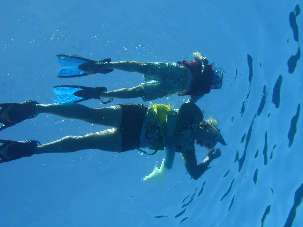 Snorkeling Magaruque Island Bazaruto Archipelago Inhambane