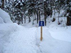 Centre de Ski Mont Castor, Matane