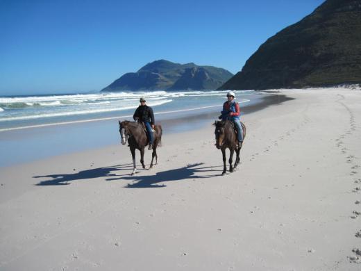 """Noordhoek, False Bay Horseback Riding"""