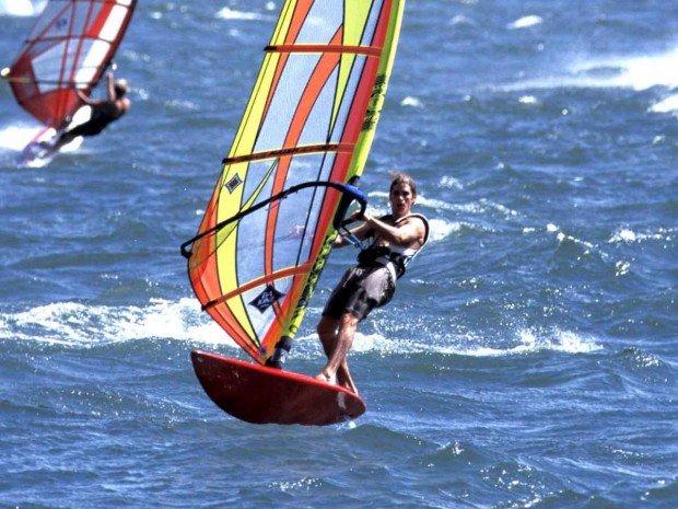 """Pleasure Bay Wind Surfer"""
